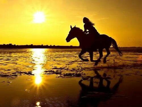 riding-a-horse